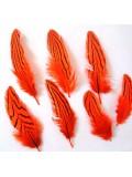 10 шт. Оранжевый цвет. Перо фазана 7-10 см. Коктейль