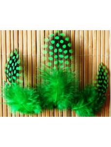 20 шт. Зеленый цвет. Цесарка 4-5 см. Горошек
