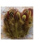 10 шт. Желтый цвет. Фазан цветное перо 4-7 см