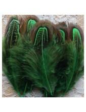 10 шт. Зеленый цвет. Фазан цветное перо 4-7 см