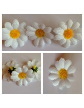 3115. 1 шт. Белый цвет. Цветные  ромашки 4 см.