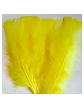 20 шт. Желтый цвет. Перо Индейки 11-16 см