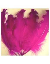10 шт. Фуксия цвет. Гусиное перо 12-16 см. Кудри