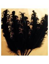 10 шт. Черный цвет. Гусиное перо 12-16 см. Кудри