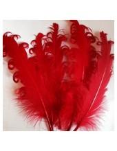 10 шт. Красный цвет. Гусиное перо 12-16 см. Кудри