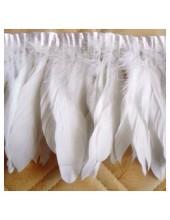 1 м. Белый цвет. Тесьма. Перья петуха на ленте 14-19 см.