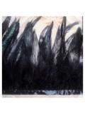 1 м. 2-х цветное. Черный цвет. Тесьма. Перья петуха на ленте 14-19 см