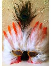 Д-13. Маски для праздника с перьями