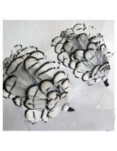 М-1. Белый цвет. Ободки для волос с перьями птиц