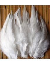20 шт. Белый цвет. Перья петуха. Цветное 10-15 см
