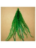 20 шт. Зеленый цвет. Перья американского петуха 10-15 см. 2-х цветные