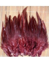 20 шт. Шоколад цвет. Перья петуха. Цветное 12-16 см