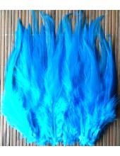 20 шт. Голубой цвет.  Перья петуха. Цветное 10-15 см