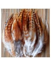 504. 10 шт. Рыжий цвет. Перья американского петуха 10-15 см.