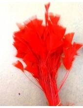 20 шт. Красный цвет. Цыпленок.  Кисточка 10-15 см