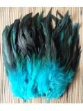 20 шт. Голубой цвет. Перо петуха 2-х цветное 12-18 см