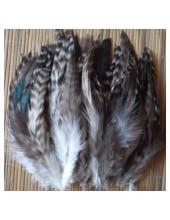 505. 10 шт. Серый цвет. Перья американского петуха 14-18 см.