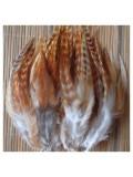 506. 20 шт. Рыжий цвет. Перья американского петуха 14-18 см.