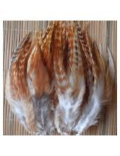 506. 10 шт. Рыжий цвет. Перья американского петуха 14-18 см.
