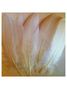 20 шт. Белый цвет. Перо Петуха 15-20 см
