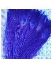 1 шт. Синий  цвет. Перья павлина 25-30 см