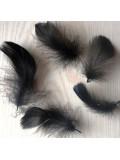 20 шт. Черный цвет. Гусиное перо 4-6 см. Плавающее