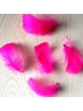 20 шт. Фуксия цвет.  Гусиное перо 4-6 см. Плавающее