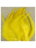 20 шт. Желтый цвет. Перья петуха 5-10 см. Цветные перья