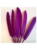 20 шт. Фиолетовый цвет.  Перо петуха 8-14 см