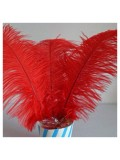 1 шт. Красный цвет. Перья страуса 25-30 см
