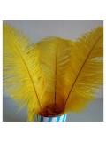 1 шт. Желтый цвет. Перья страуса 25-30 см
