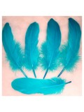 20 шт. Голубой цвет. Перо Петуха 10-15 см