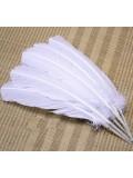 1 шт. Белый цвет. Гусиное перо 25-30 см
