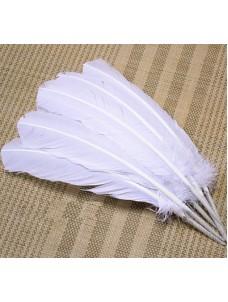 Белый цвет. Гусиное перо 25-30 см