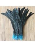 1 шт. Голубой цвет. Перья петуха 25-35 см. 2-х цветное