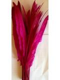 1 шт. Фуксия цвет.  Гусиное перо 30-40 см.