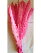 1 шт. Розовый цвет.  Гусиное перо 30-40 см.