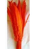 1 шт. Оранжевый цвет.  Перья петуха 30-40 см. Цветная