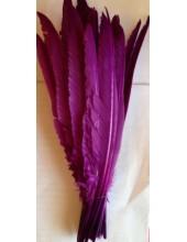 1 шт. Фиолетовый цвет.  Гусиное перо 30-40 см.
