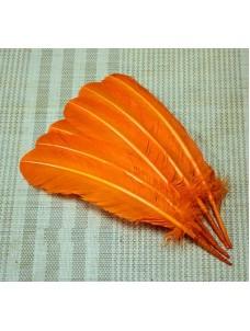 Оранжевый цвет. Гусиное перо 25-30 см