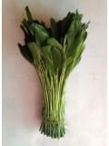 20 шт. Темно-зелень  цвет. Перья петуха. Кисточка 12-17 см. Цветная