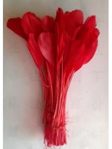 20 шт. Красный цвет.  Кисточка цветная 12-17 см