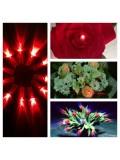 10 шт. Красный цвет. Светодиоды в живые цветы