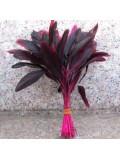 20 шт. Фуксия цвет. Перо петуха. Кисточка 10-20 см. 2-х цветное