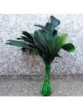20 шт. Зеленый цвет. Перо петуха. Кисточка 10-20 см. 2-х цветное