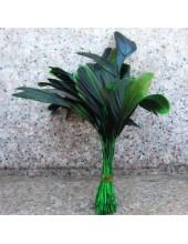 20 шт. Зеленый цвет. Кисточка 10-20 см. 2-х цветное