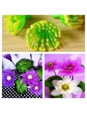 982. 1 шт. Пестики и тычинки в цветы.