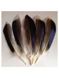 10 шт. Белый цвет. Перья цветной утки 10-15 см.