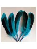 10 шт. Голубой цвет. Перья цветной утки 10-15 см.