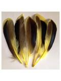 10 шт. Желтый цвет. Перья цветной утки 10-15 см.